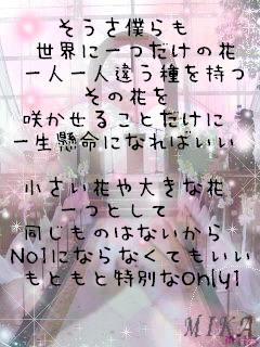世界に一つだけの花/SMAP