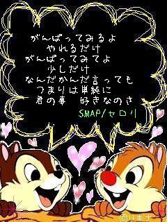 セロリ/SMAP